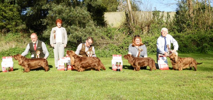 Sussex Spaniel Open Show 2015 Results