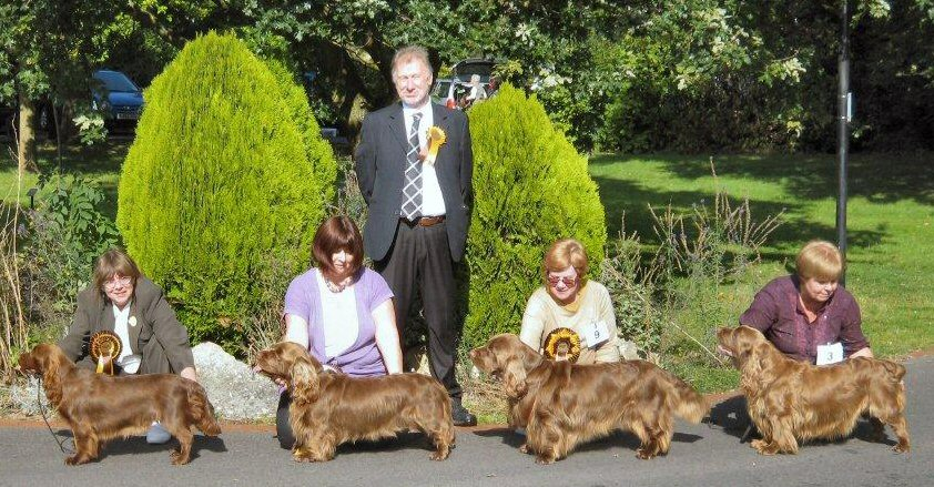 Latest Sussex Spaniel Show Results